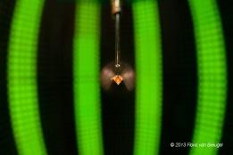 A fruit fly (Drosophila melanogaster) tethered in an LED flight simulator.