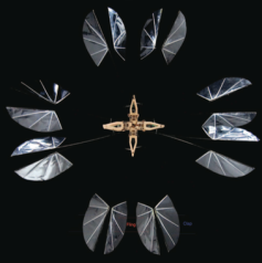 Stroboscopic image of our flapping hovering micro air vehicle.